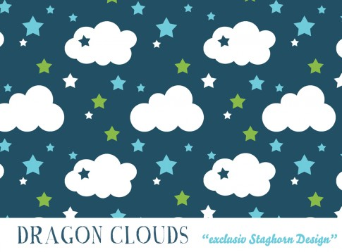 Dragon Clouds Bio Jersey petrol