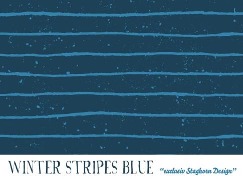 *Blue Winter Stripes* Bio Sweat *Winter Jungs*