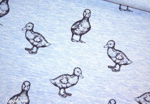 Stenzo Sweat Enten hellblau *ducky ducks* - Oeketex - elastisch