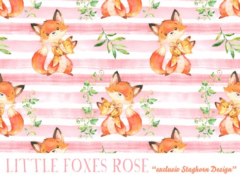 Little Foxes rose