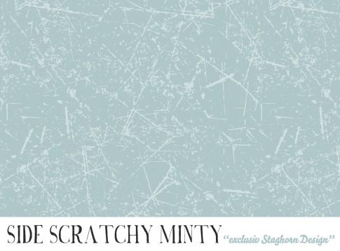 *Side Scratchy Minty* Bio Jersey *Igel Party Serie*