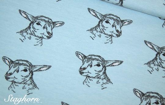 Stenzo Jersey *cutie lamb* hellblau Jersey - Oeketex - elastisch